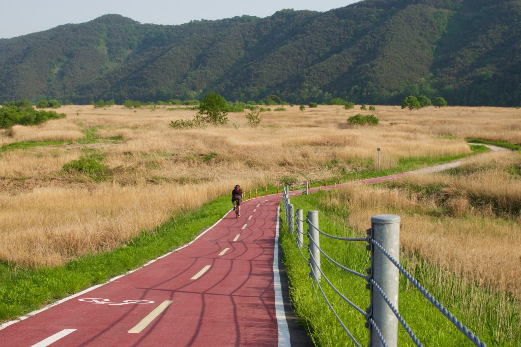 A cyclist riding along the bike path in Korea during the spring months of May. The climate in South Korea is warm and nature is abundant.