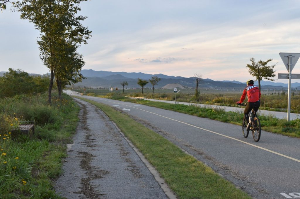 A cyclist cycling down a korean bike path in the Autumn season. The weather is clear and he is surrounded by trees on either side. The south Korea climate is pleasantly warm.