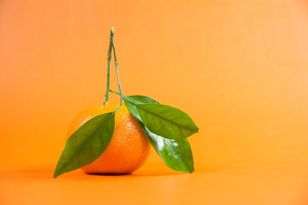A picture of an orange